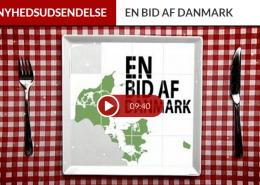 en_bid_af_danmark